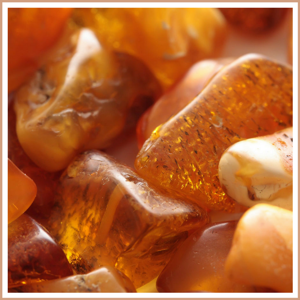 Amber Candle Making Fragrance Oil