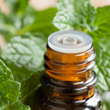 Peppermint Mentha Arvensis Essential Oil.