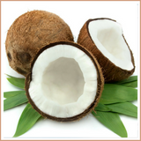 Coconut Candle Making Fragrance Oil