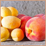 Nectarine & Lemon Blossom Fragrance Oil