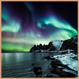 Northern Lights Fragrance Oil
