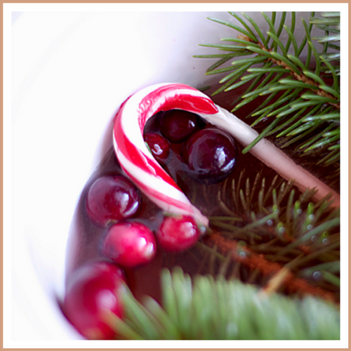 Cranberry Peppermint Candle Making Fragrance Oil