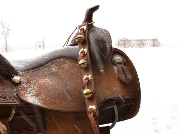 Western Saddle Sleigh Bells