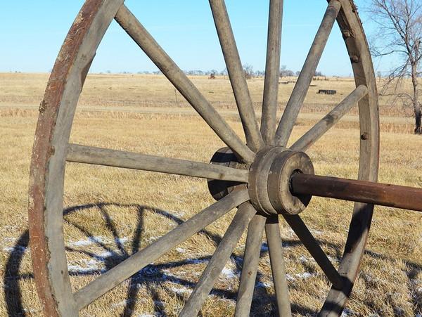 """Wood Hub Wheels with Axle-60"""""""