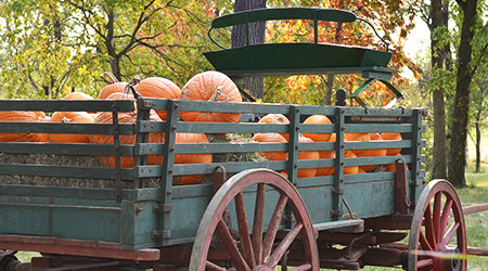 Display Wagons & Carts