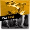 CAT PA55 Rebuild Kits