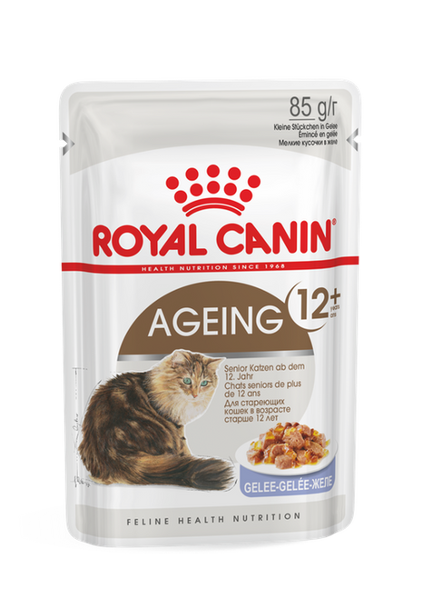 Royal Canin Ageing 12+ in Jelly Wet Cat Food