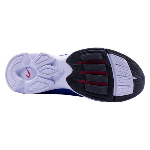 Newton Distance Elite Men Cobalt/Red