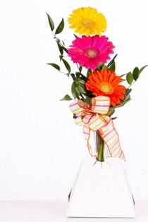 Automatic Vase Holders Wrapsmart