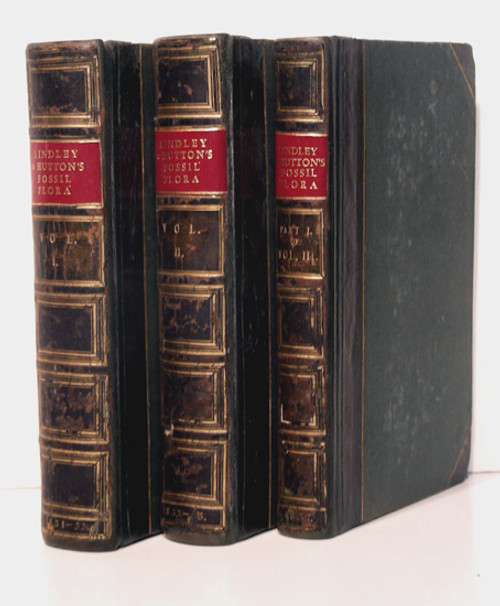 Rare Paleobotany Book: Lindley, John & Hutton, William: The Fossil Flora of Great Britain. 1831-1837