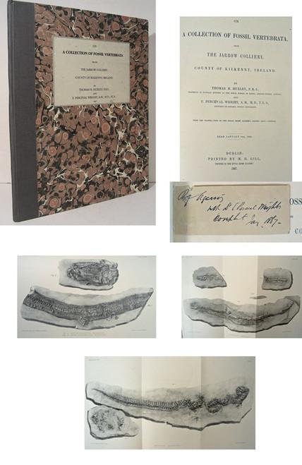 Rare Paleontology book, Thomas Huxley, Fossil Vertebrata from the Jarrow Colliery