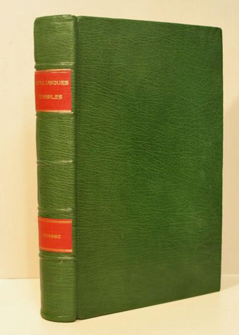 Rare Paleontology Book, Louis Agassiz, Etudes Critiques zur les Mollusques Fossiles