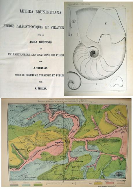Rare Book French Jura Geology: J. Thurmann; Lethea Bruntrutana..Jura Bernois, 1861-64
