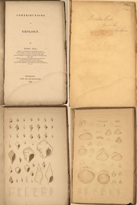 Rare Paleontology Book; Lea, Isaac; Contributions to Geology. Philadelphia, 1833. Book 525-B