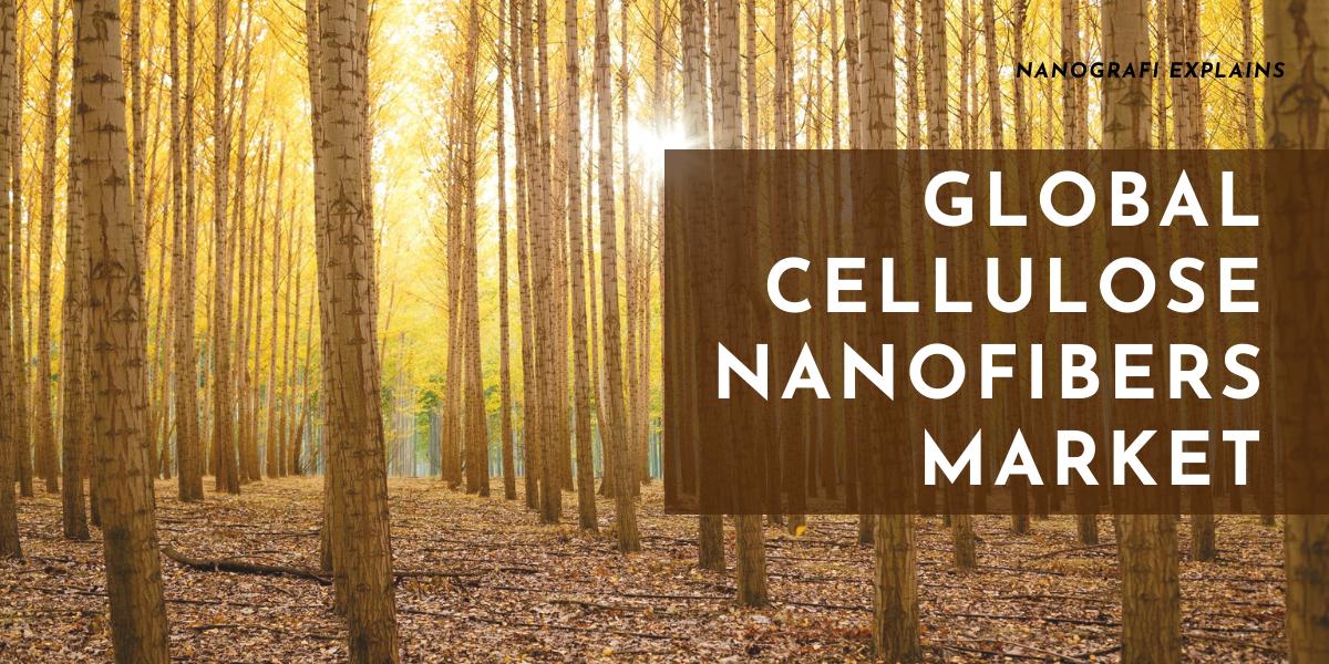 Global Cellulose Nanofibers Market and Its Future