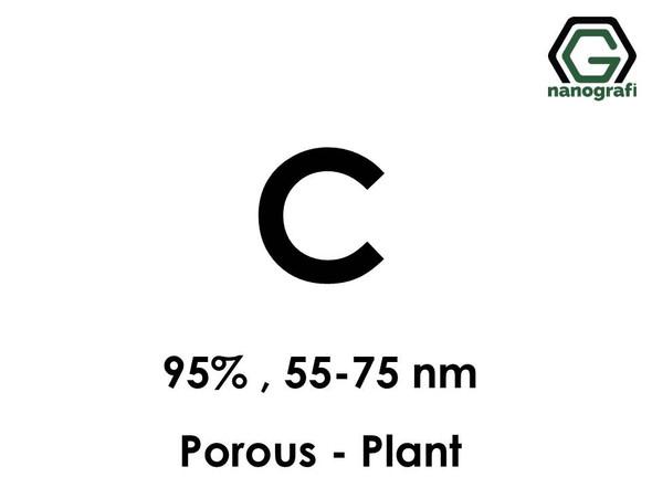 Porous Carbon (C) Nanopowder/Nanoparticles, Purity: 95%, Size: 55-75 nm, (Plant) - NG04EO0707