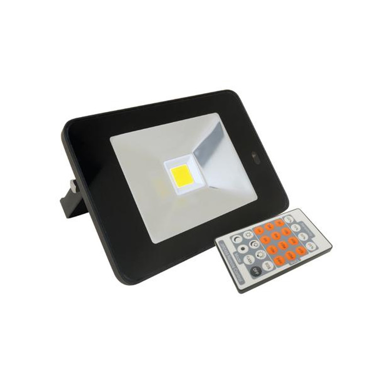 Sensor Floodlight - Black - 20W