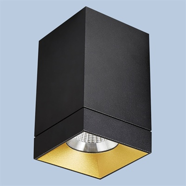 Square Fixed Surface Mounted Downlight Black