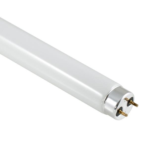 GE 58w 5ft T8 Linear Fluoro Tube 6400K Daylight