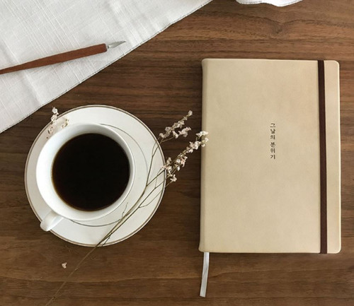 The Day's Mood Daily Diary (undated style)