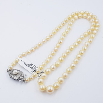 Pearl Strand Necklace Sterling Silver Clasp 52cm #53822