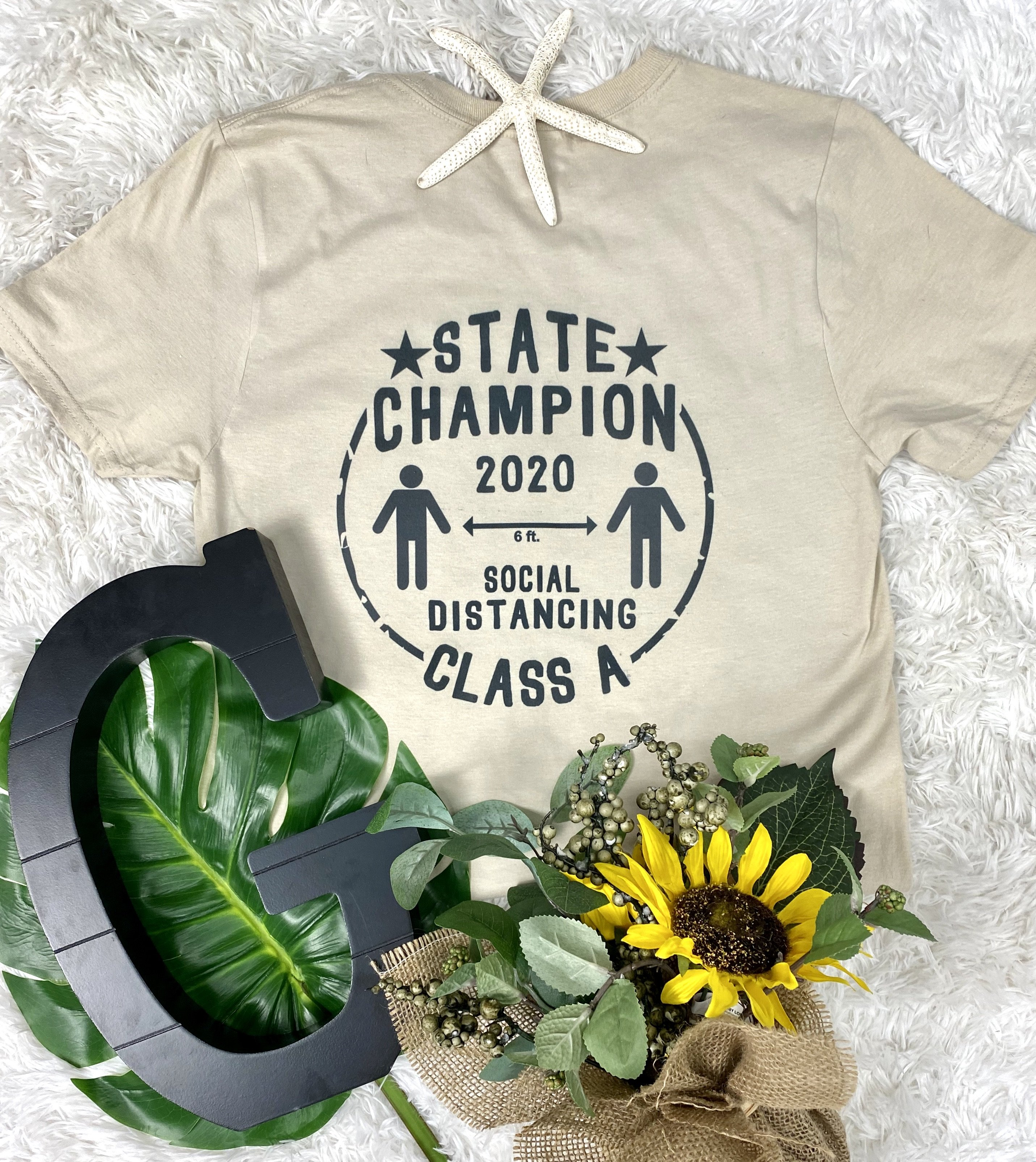 Social Distancing State Champion