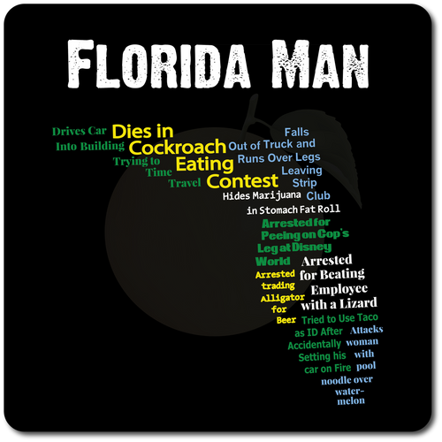 Florida Man, the hero we all deserve