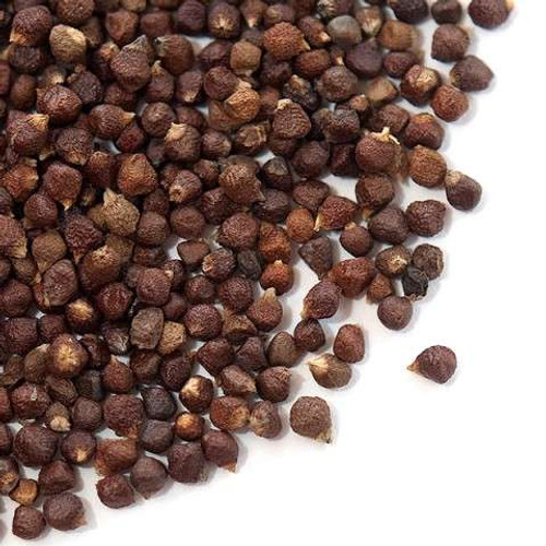 Grains of Paradice_Wholesale