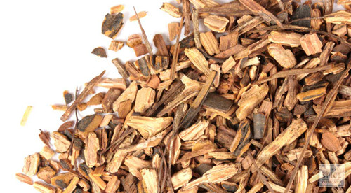 Sarsaparilla Root_Wholesale