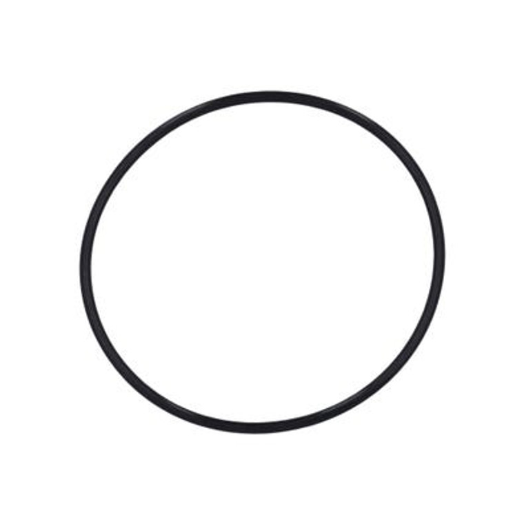 Waterway Top Load Filter Lid O-Ring, 805-0360