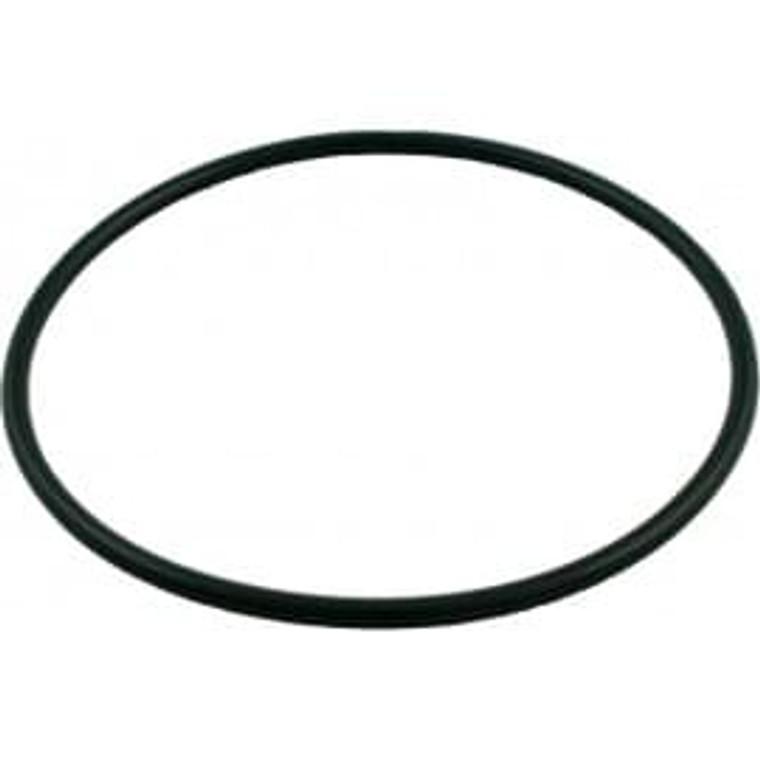 Hayward Chlorinator O-Ring, CLX200K