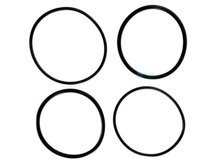 Raypak O-Ring Kit 2 inches