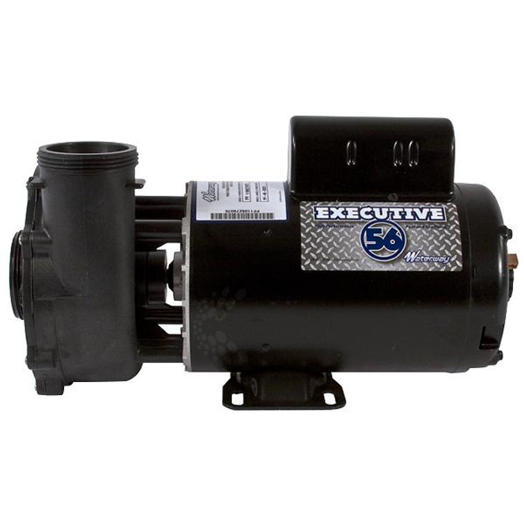 "Waterway Executive Pump 56F 2HP 2 Speed 2""/2"""