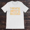 Daydream Tees Thankful Grateful Blessed