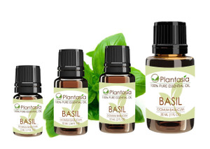 Basil Sweet Essential Oil 100% Pure Therapeutic