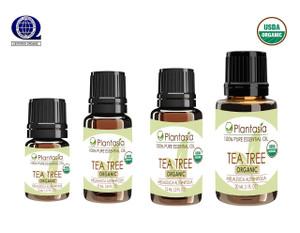 Tea Tree Organic Essential Oil 100% Pure Therapeutic Grade