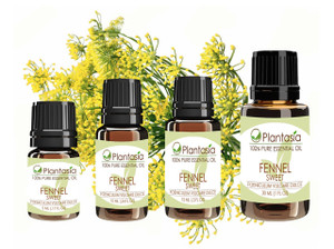 Fennel Sweet Essential Oil 100% Pure Therapeutic Grade Aromatherapy