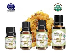 Frankincense Organic Essential Oil 100% Pure Therapeutic Grade