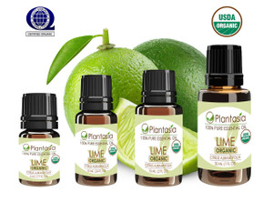 Organic Essential Oil 100% Pure and Natural Therapeutic Grade Aromatherapy
