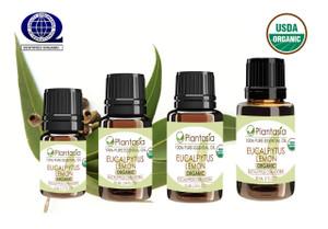 Eucalyptus Lemon Organic Essential Oil 100% Pure and Natural Therapeutic Grade