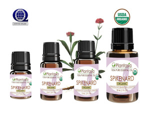 Spikenard Organic Essential Oil 100% Pure and Natural Therapeutic Grade Aromatherapy