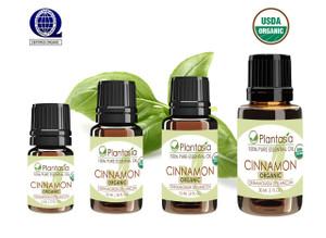 Cinnamon Organic Essential Oil 100% Pure and Natural Therapeutic Grade Aromatherapy