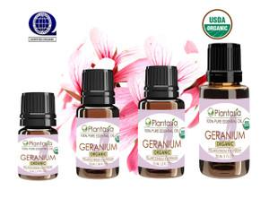 Geranium Organic Essential Oil 100% Pure and Natural Therapeutic Grade Aromatherapy