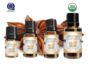 Anise Organic Essential Oil 100% Pure and Natural Therapeutic Grade Aromatherapy