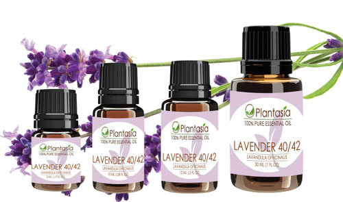 Lavender 40/42 Essential Oil 100% Pure Natural Aromatherapy