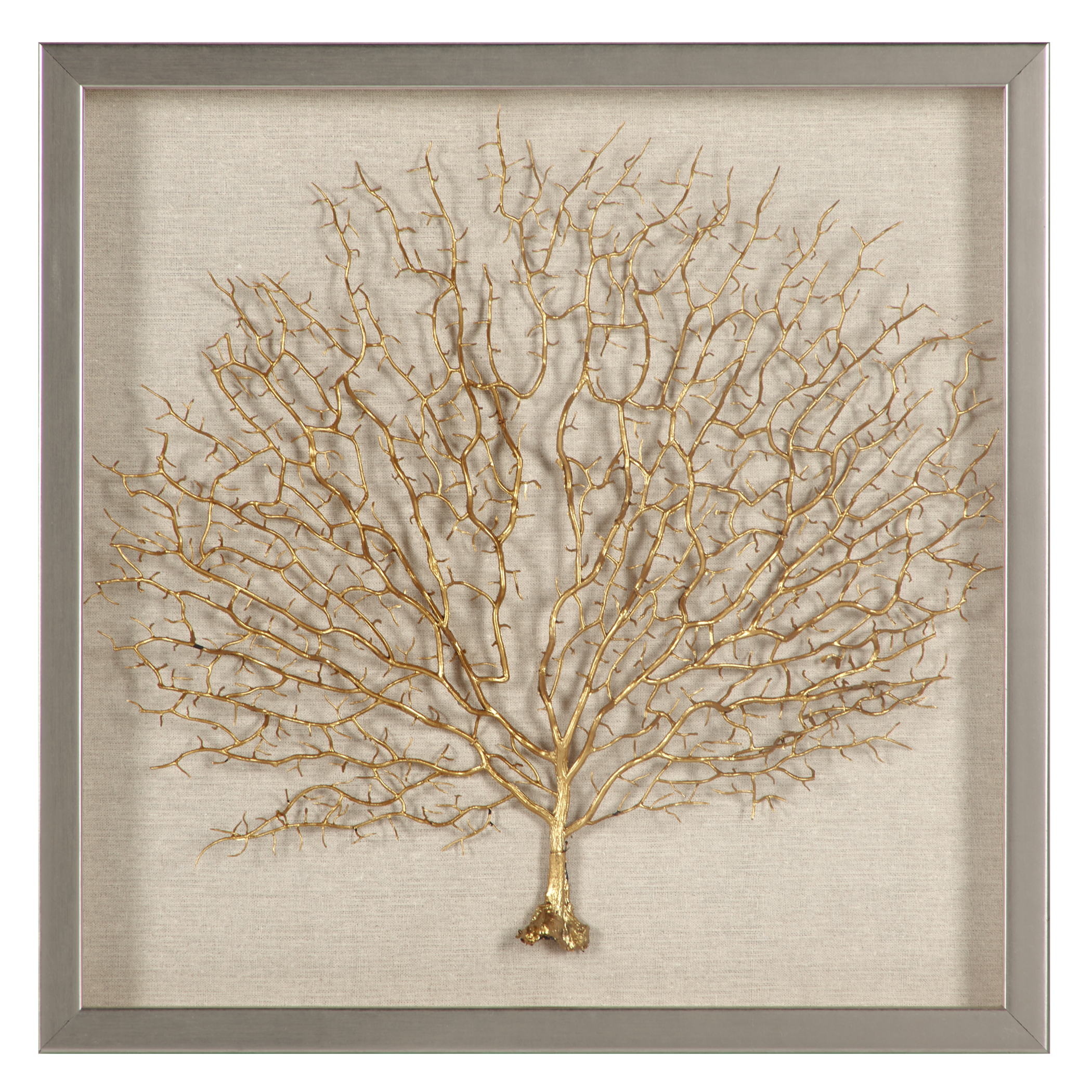 Sea Fan Shadowbox
