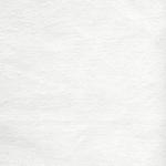 velvet white~362