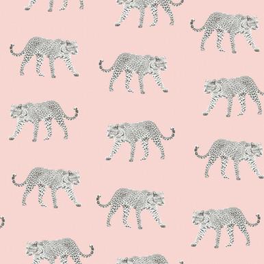 Prowl Pink Jaguars Wallpaper