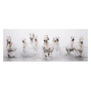 White Horses 1