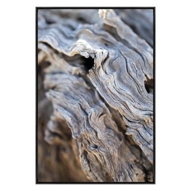 Detritus Planks 1